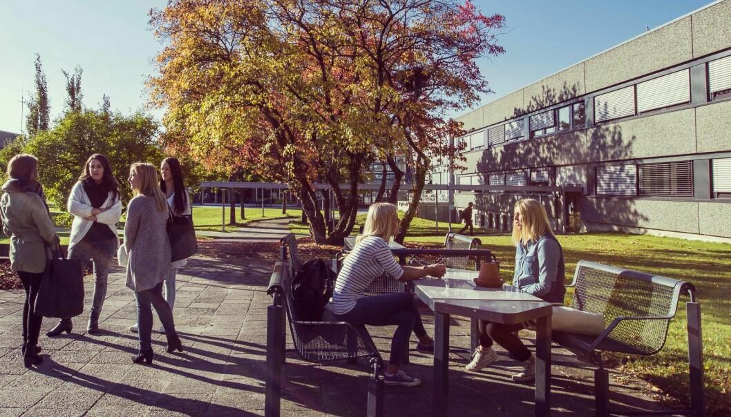 Campus Porsgrunn er en del av Universitetet i Sørøst-Norge. (Foto: Tine Poppe)