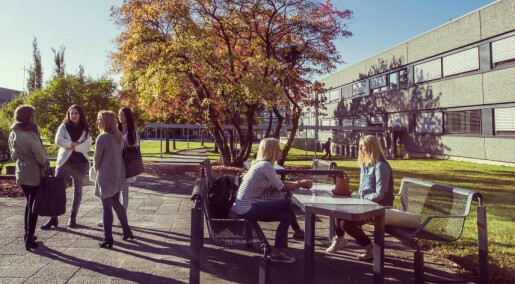 Markerer 25 år med doktorgradsutdanning i Porsgrunn