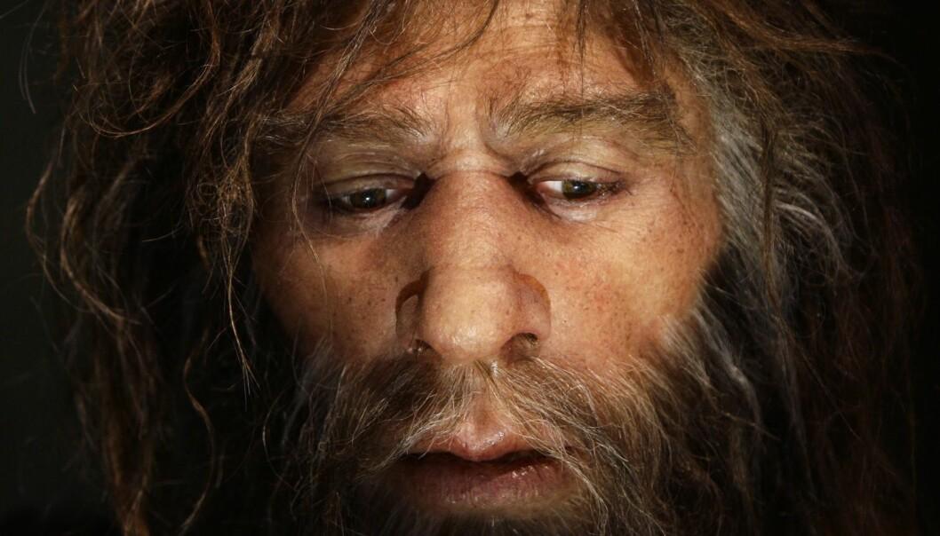 Denne rekonstruksjonen av en neandertal-mann står i Kroatia, nær hulene hvor forskerne har undersøkt neandertal-DNA. (Illustrasjonsbilde: Nikola Solic/Reuters/NTB Scanpix)