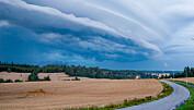 Regn skyller bort viktige næringsstoffer fra jordbruket