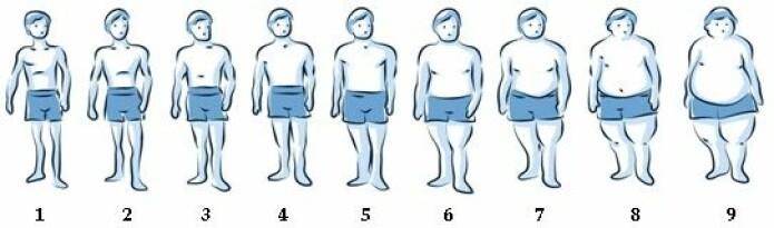 Illustrasjonen viser silhuettene som forskerne brukte for å måle vektøkning. (Illustrasjon: FG Real/ A Villén)