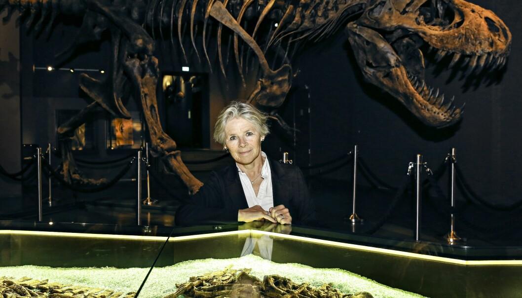 Musemsdirektør Tone Lindheim hadde samtaler med de ansatte da hun startet i jobben ved Naturhistorisk museum i 2015. Notatene fra disse møtene er nå kopiert opp og spredd på museet og universitetet.  (Foto: Signe Dons, Aftenposten, NTB scanpix)