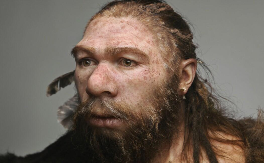 Neandertalerne er blir vurdert, revurdert og gjenvurdert de siste tiårene – de har fremstått som stadig likere oss, stadig mer avanserte med hensyn til fysiologi, adferd, kultur og kreativitet. Det er flere år siden vi sluttet å tenke på dem som et blindspor, en evolusjonær tabbe, skriver Erik Tunstad. (Foto: Science Photo Library)