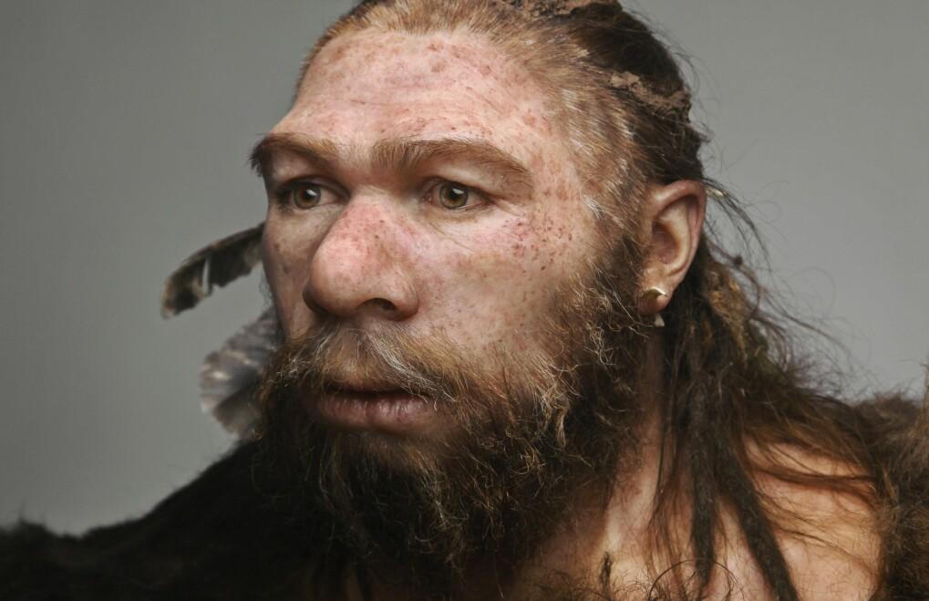 Kommentar: Neandertalerne lever videre i oss