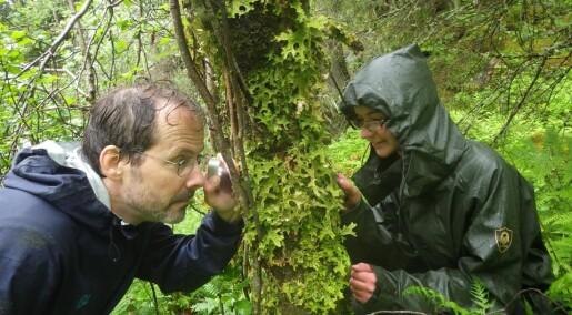 Norge og Sverige samarbeider om å kartlegge arter