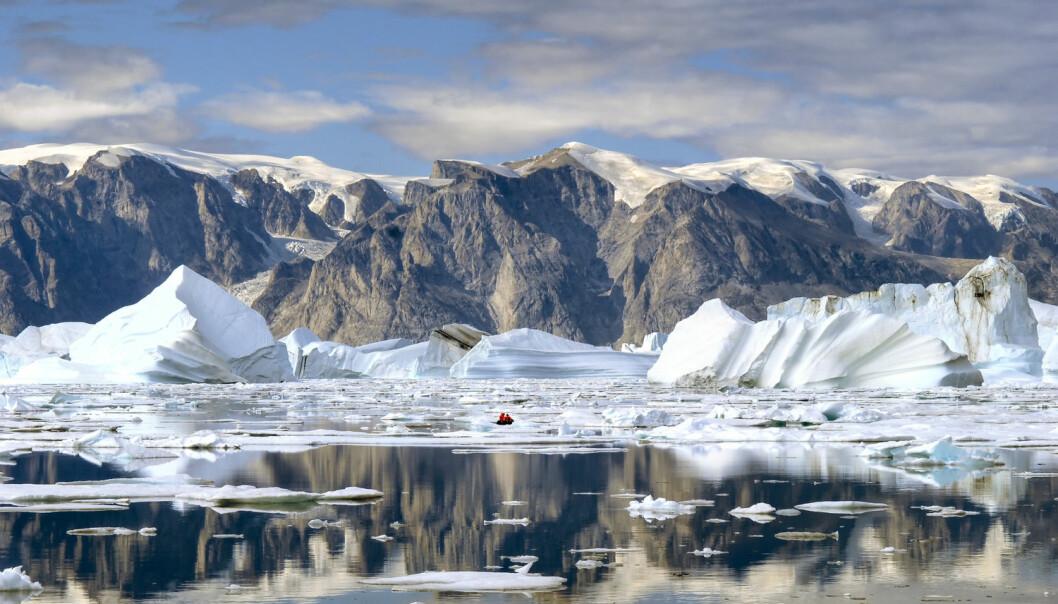 Torskelarvar og yngel frå Lofoten-området kan innimellom hamne ved Nordaust-Grønland. (Foto: Shutterstock / NTB scanpix)