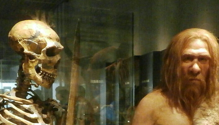 Hvor gode var neandertalerne til å bruke hendene?