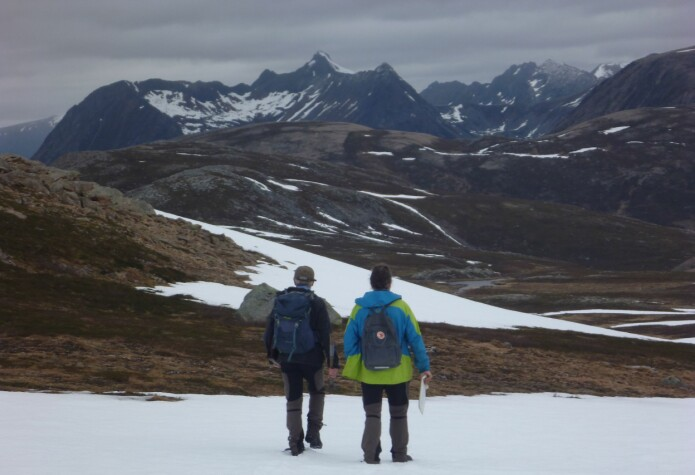 Utenom allfarvei – Bogeheia på Hinnøya (Foto: Ane K. Engvik)
