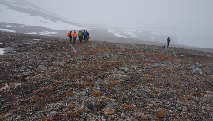 Når man står i snødrevet på Svalbard i starten av juli så tenker man ikke først og fremst at tørke er et stort problem. Men noen steder i Arktis vil klimaendringene føre med seg en nedgang i mengden nedbør. Da hjelper det ikke om det samtidig blir varmere. Varmt og tørt kan være like ugunstig for plantevekst som kaldt og fuktig. (Foto: Anders L. Kolstad, NTNU Vitenskapsmuseet, CC BY-SA 4.0.)