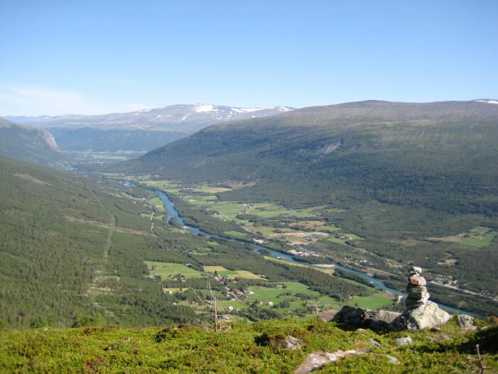 Rødmerket varde markerer lokalisering av sikker sti ned fra Øyberget (1227 m o.h.), Skjåk. (Foto: Henriette Linge)