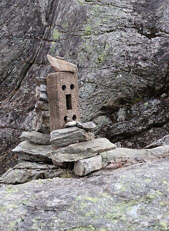 Småvarde ved Trollstigen, eller er det en rovvarde? (Foto: Henriette Linge)