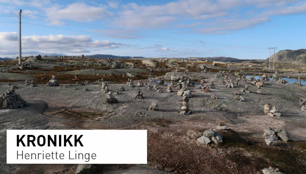 Høy tetthet av småvarder ved Lysevegens høyeste punkt. Lysevegen går mellom Lysebotn i Rogland og Sirdal i Vest-Agder. (Foto: Henriette Linge)