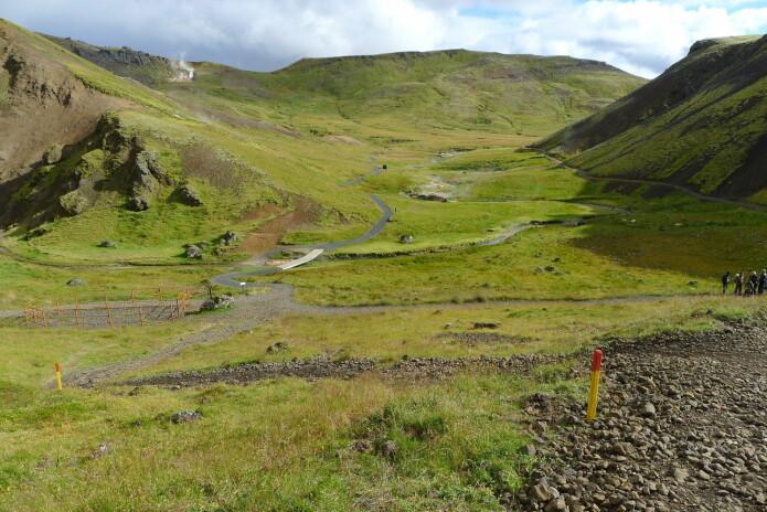 Masseeksplosjon i turismen på Island har gitt store utfordringer med slitasje. Her er nyanlagte turstier i et mye besøkt naturområde. (Foto: Dagmar Hagen)