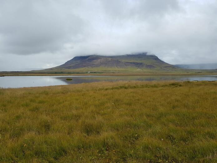 Ekskursjoner ga oss direktekontakt med Islands restaureringsutfordringer. Denne innsjøen var tørrlagt for noen år siden, men har gjenoppstått ved hjelp av aktive restaureringstiltak. (Foto: Magni Olsen Kyrkjeeide)