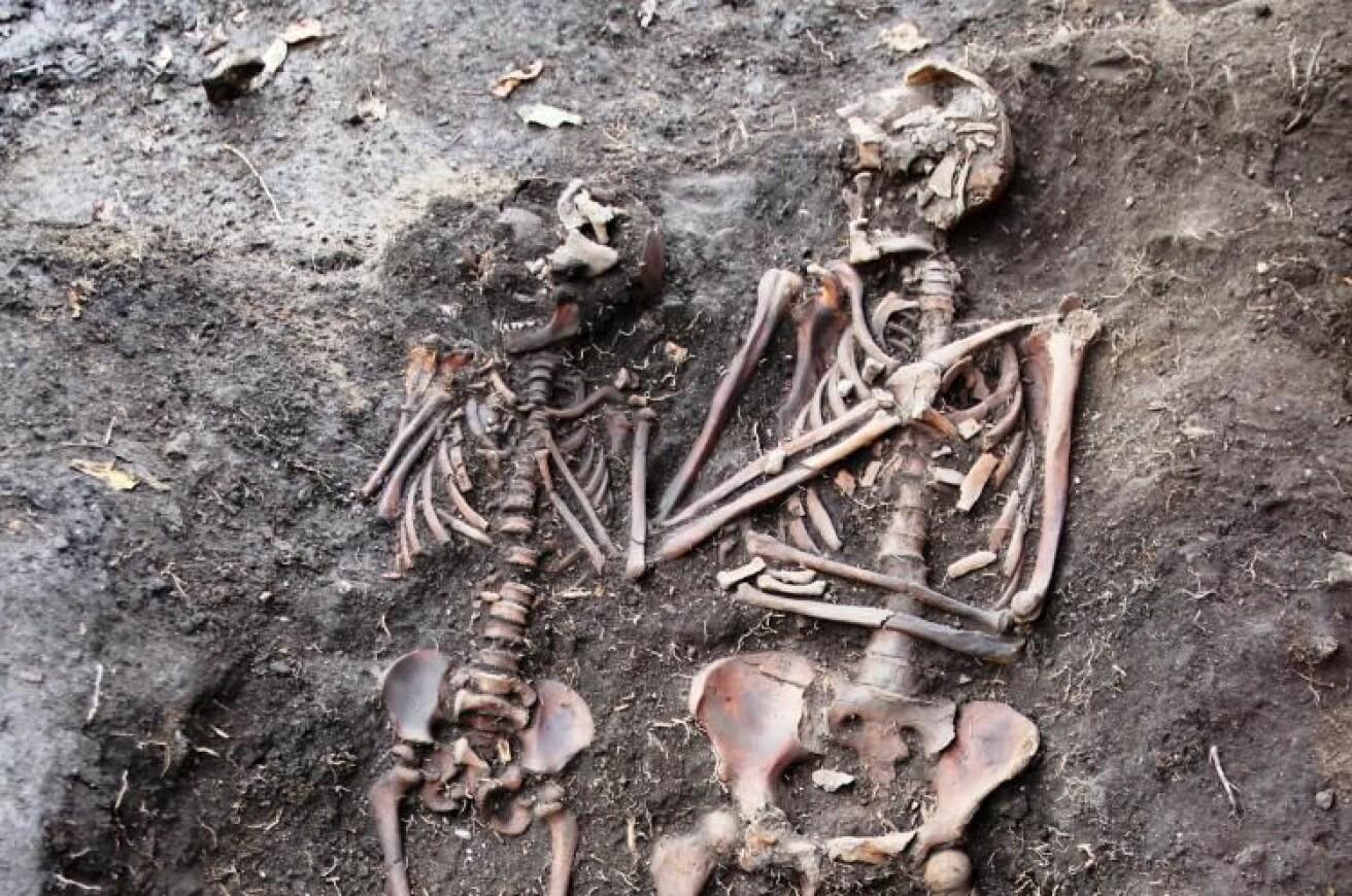 Mor og barn - sammen i døden. Forskning på 600 år gamle Oslo-borgere kan gi oss ny innsikt om menneskenes helsehistorie. (Foto: Lars Haugesten /NIKU).