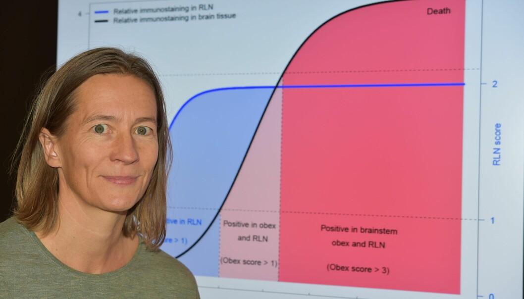 Hildegunn Viljugrein er seniorforsker ved Veterinærinstituttet (Foto: Vetinst)