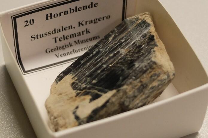 Hornblende fra Kragerø. (Foto: Eivind Torgersen)