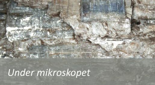 Slik ser mineralet kyanitt ut under mikroskopet
