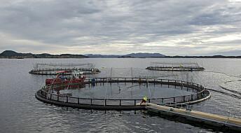 Norsk havbruk: Hvor går tålegrensen?
