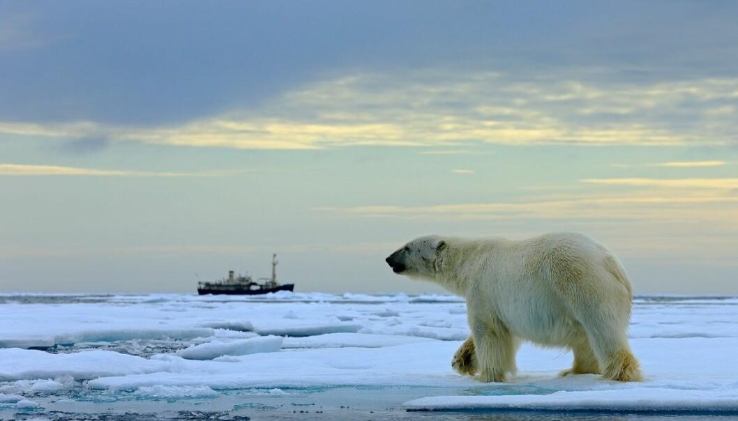 Forskinga ligg eit byks bak ambisjonane Norge har for mellom anna ressursutnytting i polare strok, meiner internasjonalt polarpanel.  (Foto: Ondrej Prosicky, Shutterstock, NTB scanpix)