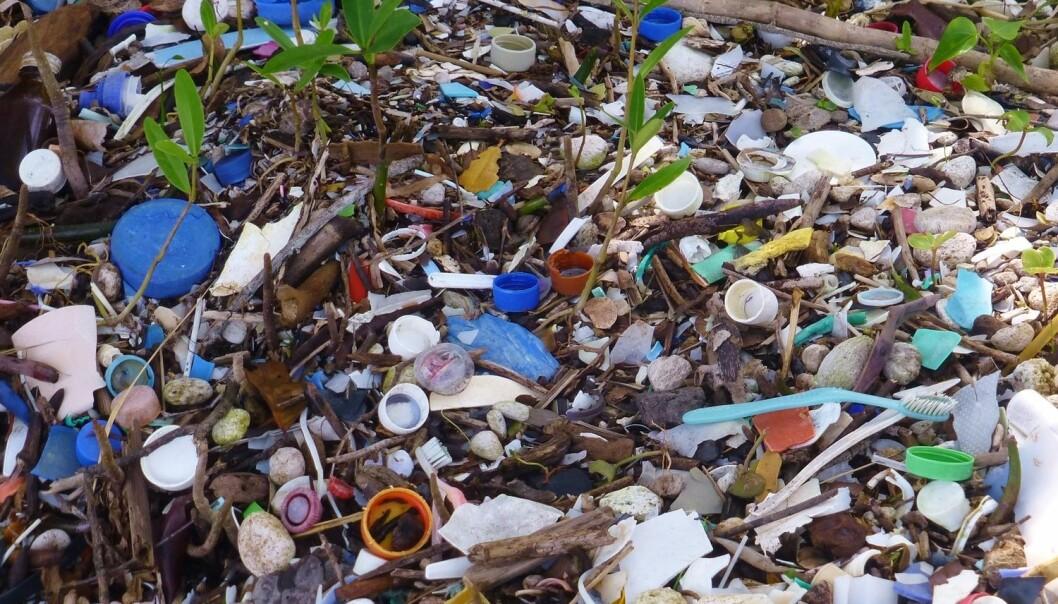 Plasten vi finner skylt opp på strendene våre, er bare en liten del av plastavfallet som har endt opp i havet. Mye synker nemlig til bunns, hvor det sakte, men sikkert brytes ned til mindre og mindre biter.  (Illustrasjonsfoto: Johanna Veldstra / Shutterstock / NTB scanpix)