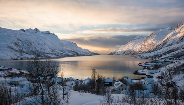 Slik vil klimaendringene påvirke norsk natur