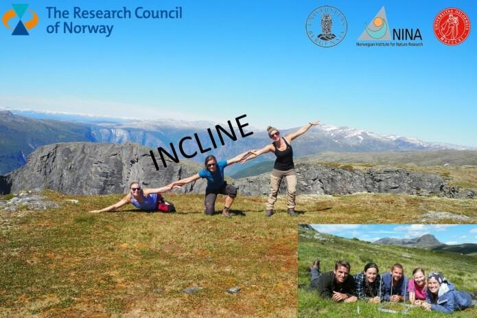 UiB, NINA og UiO samarbeider nasjonalt om INCLINE-prosjektet som fikk finansiering gjennom forskningsrådet (i bildene: Ragnhild Gya, Vigdis Vandvik og Dagmar Egelkraut og nederst til høyre Olav Skarpaas fra UiO, Vigdis Vandvik, Joachim Töpper, Ragnhild Gya og Siri Lie Olsen fra NINA, (Foto: Ragnhild Gya & Jonathan Soule)