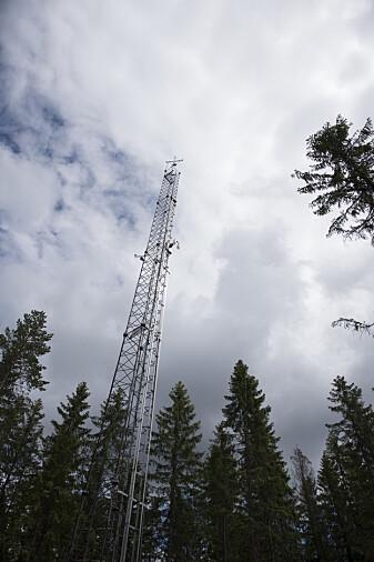 Målestasjonen i Hurdal utvekslingen av CO2 mellom lufta og trærne. (Foto: Lars Sandved Dalen / NIBIO)