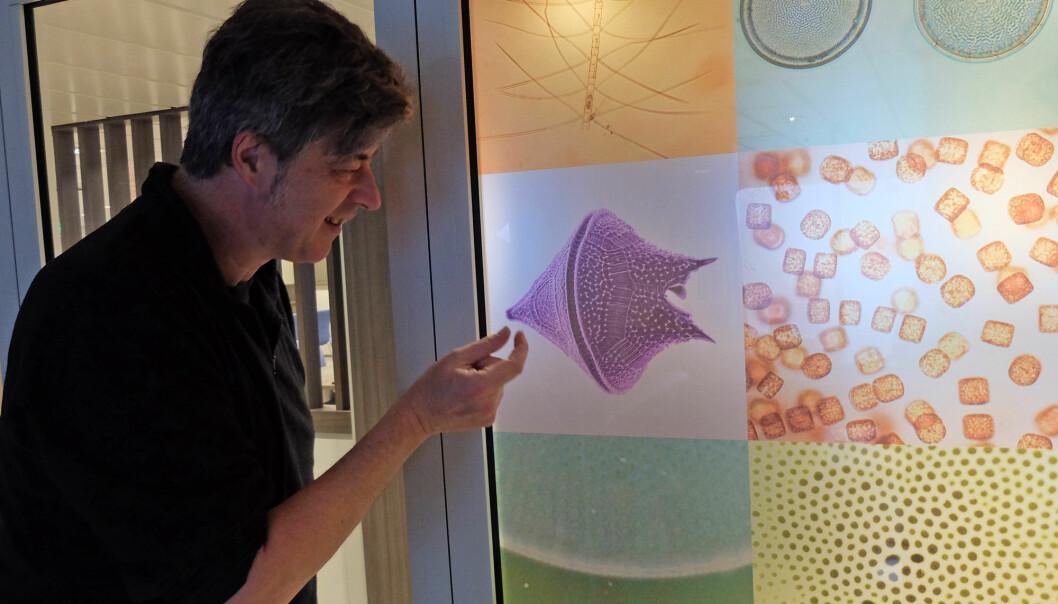 Rudi Cayers foran dekoren i salongen, som viser mikroalger fotografert i mikroskop. (Foto: Inger Lise Næss)