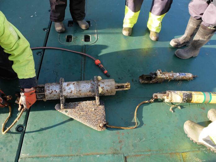 Riggen hentes opp fra havets dyp. En akustisk sender fjernutløser riggen fra havbunnen, så bøyen med instrumentene flyter opp til overflaten og kan fiskes om bord. (Foto: Inger Lise Næss/UNIS)