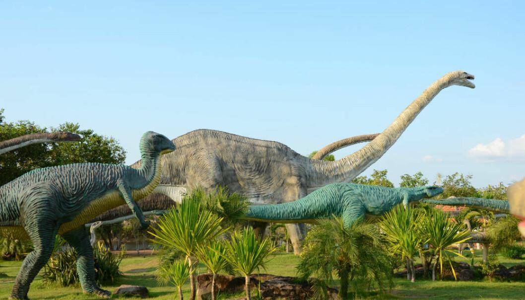 Har du lyst til å finne ut hvordan dyreartene har utviklet seg gjennom de geologiske tidsaldrene, finnes det nå er verktøy for deg.  (Foto: Colourbox)