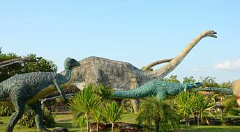 Slik kan du bli dinosaurforsker på 1-2-3