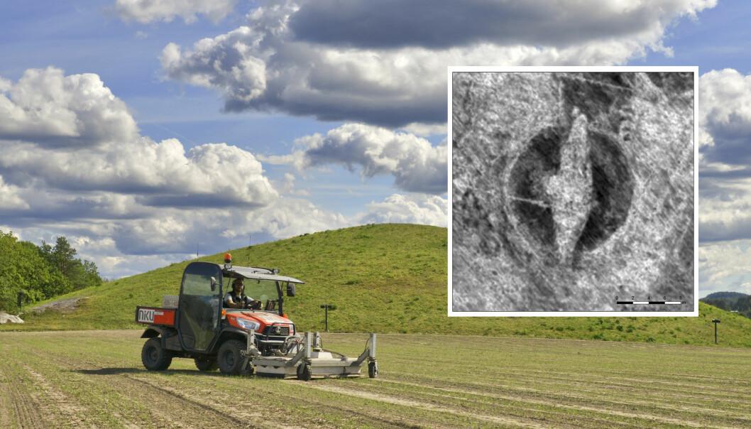 Skipsgraven ble funnet med georadar. (Foto: Lars Gustavsen / NIKU)