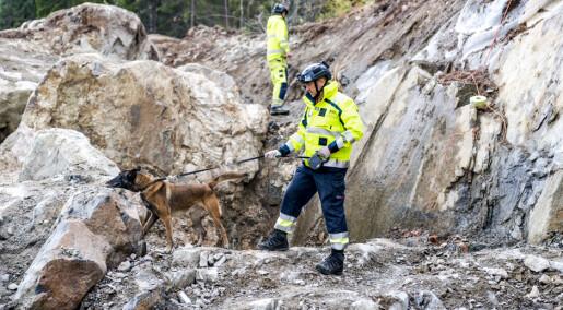 Dynamitt-hunder finner glemt sprengstoff på byggeplasser