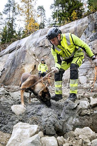 Vegar Falsten og hundene han trener farter land og strand rundt for å gjøre det tryggere på byggeplasser. (Foto: Espen Hofoss)
