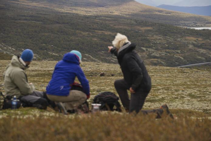 Innen viltturisme fins gode muligheter for å supplere med kulturbaserte opplevelser, viser BIOTOURs forskning på moskus- og isbjørnsafari. (Foto: CH / Visitnorway.com)