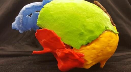 Gorm den Gamle er printet i 3D: Hadde merkelig utvekst i nakken