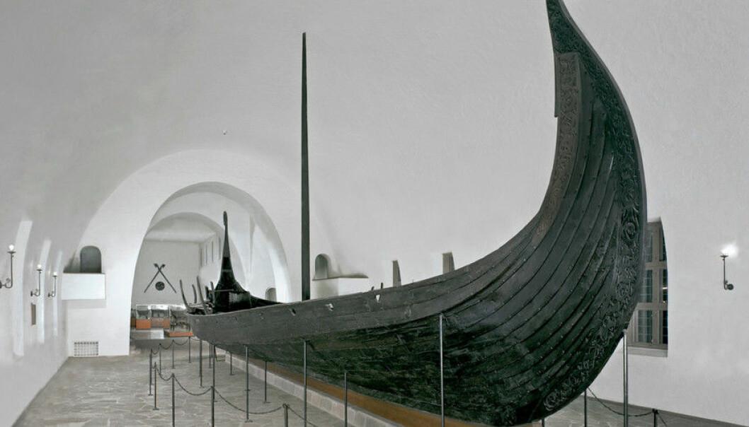 Vikingane reiste til Irland med seglskip. Dette er Osebergskipet. Det er i hovudsak på Vestlandet ein finn gjenstandar frå Irland, frå Austlandet reiste ein heller til Sverige og Danmark. (Foto: Kulturhistorisk museum, UiO)