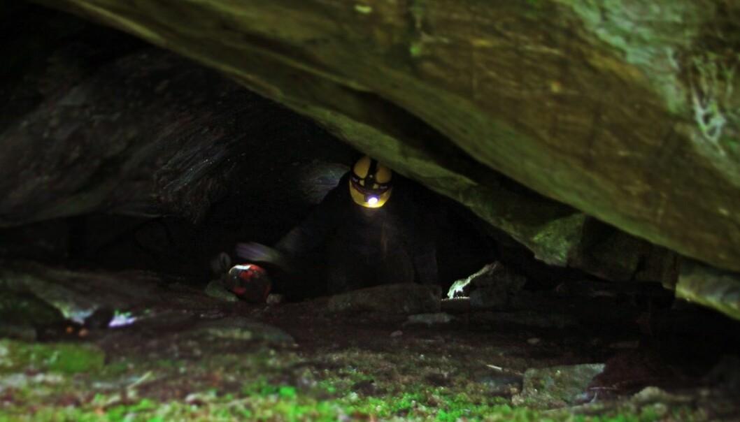 Bildet er tatt fra inngangspartiet til bjørnegrotten og innover, og viser arkeologen Heidrun Stebergløkken i aksjon. Bjørnebeina ble funnet langt inne i denne grottegangen. (Foto: Jørgen Rosvold, NTNU)
