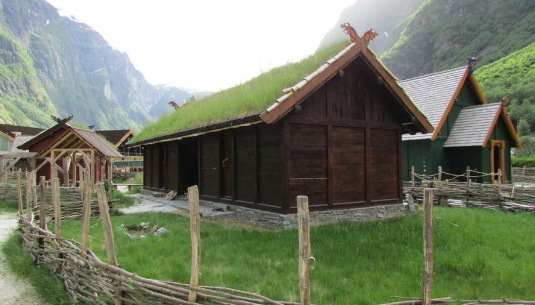 Vikingbyen Njardarheimr i Vikingvalley i Gudvangen starta opp som ein sommarmarknad, men er no blitt eit permanent opplevingssenter. Men tilbodet har òg fått kritikk for måten vikingtida blir formidla på. (Foto: Wikimedia commons)