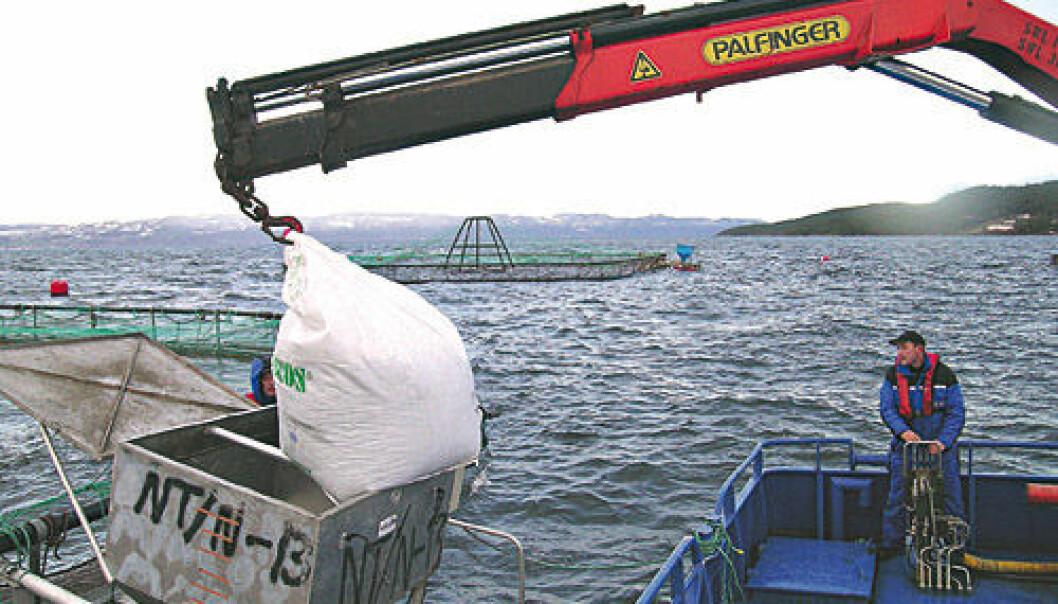 Moderne fôring i havbruk. Leverandørbransjen bidrar med nesten like mye verdiskaping og sysselsetting som sjømatnæringen selv.   (Foto: Ewos Innovation)