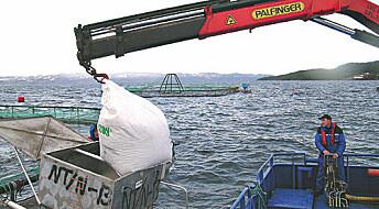 Ingeniører strømmer til sjømatnæringen etter oljekrisen