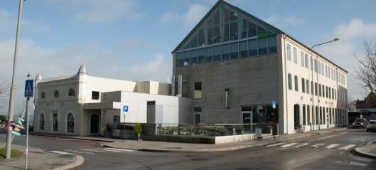 Høysesong på museet