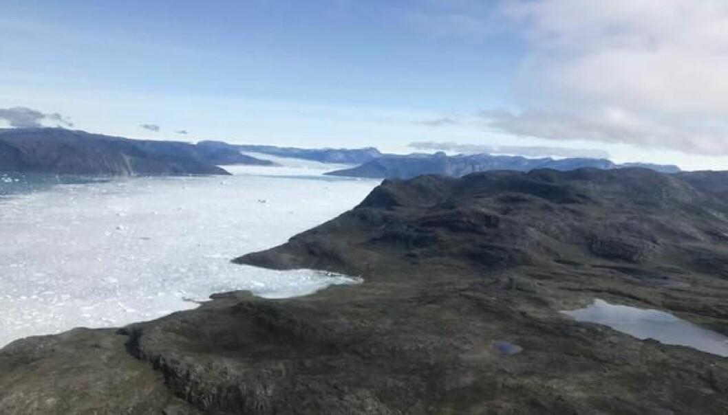 I området Isua i det sørlige Grønland har geologer funnet de hittil eldste sporene av livet på jorden – men forskerne er ikke enige i hvilke spor som viser hva. (Foto: Tue Hassenkam)