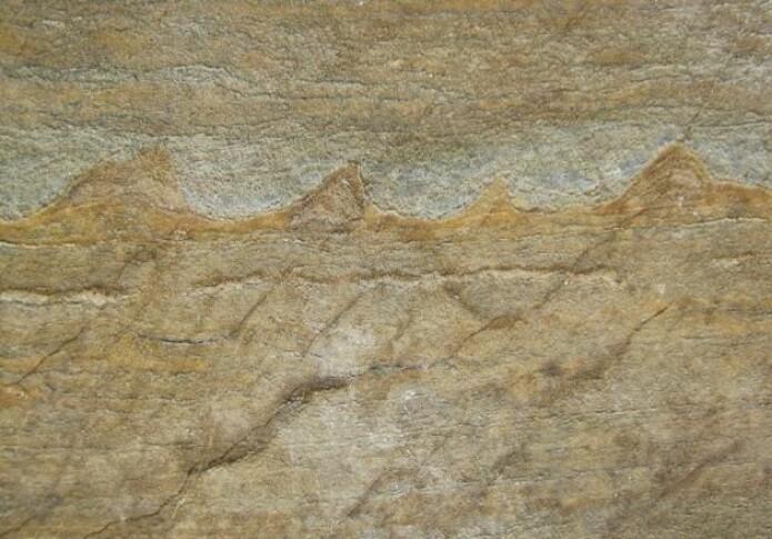 Forskerne er uenige om disse toppene er stromatolitter, altså spor fra levende bakterier. (Foto: Nutman et al. 2016)