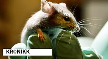 Dyreforsøk er vanskelig, derfor trenger vi etiske retningslinjer