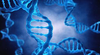 Forskeren forteller: Fant gener som kan avdekke årsakene til benskjørhet og bestemme muskelstyrke