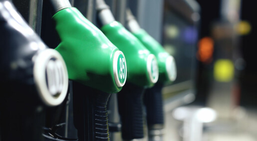 Nå kan det bli billigere å lage drivstoff av trær