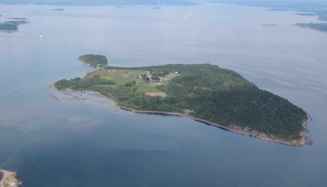 På denne øya i Oslofjorden soner rundt 115 menn den siste delen av sine fengselsdommer. (Foto: Bastøy fengsel)