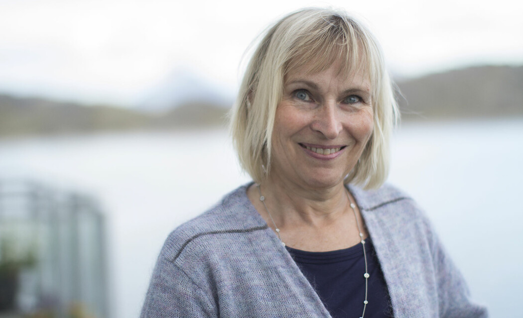 Berit Støre Brinchmann er professor i sykepleieetikk ved Nord universitet. (Foto: Svein-Arnt Eriksen)